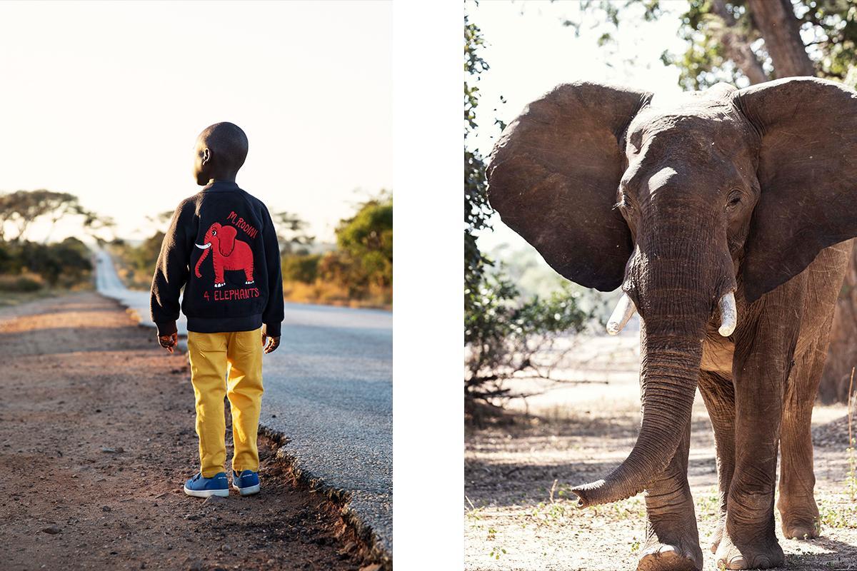 Realmomster Mini Rodini 4 Elephants Collection